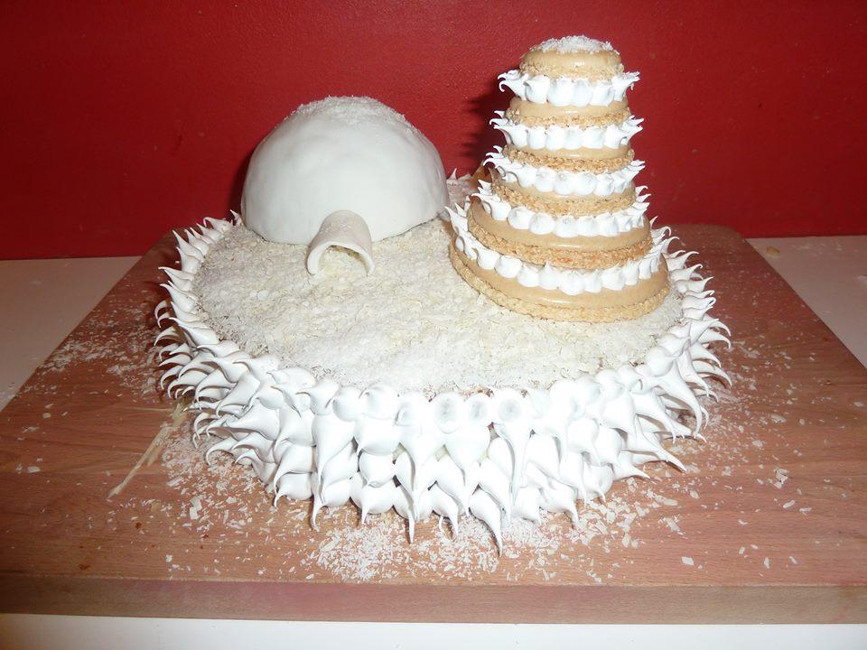 cake design remi et julie gâteau sous la neige